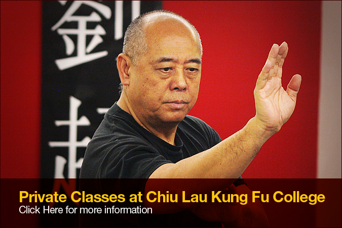 Private Classes with Sifu Chiu Lau